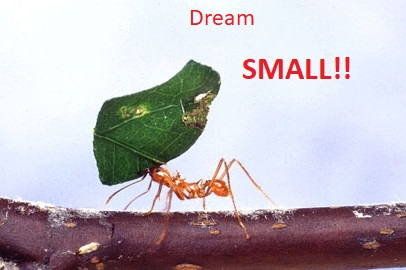 Dream small