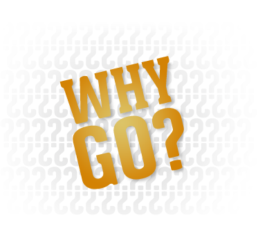 why_go_graphic